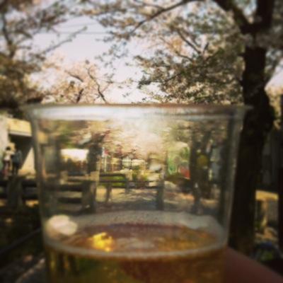 photodg.JPG